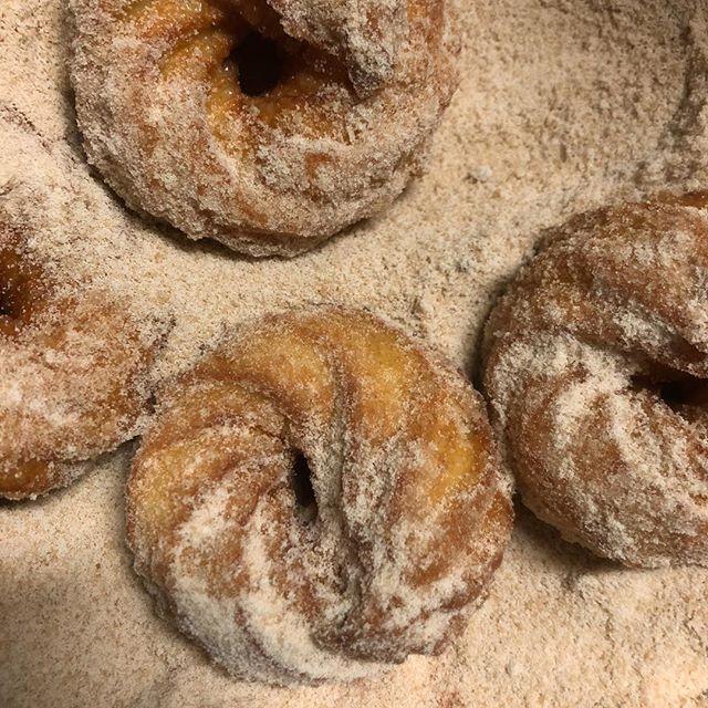 sister doughnuts