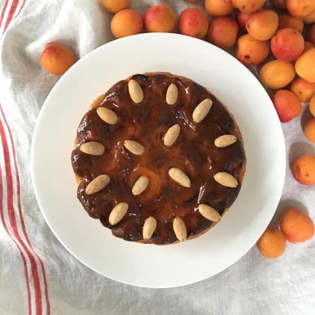 杏のジャムはお菓子に、お料理に、大活躍。にしだ果樹園のワイルドな完熟杏で作った月読みアプリコットのジャムができました。