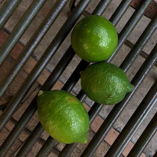 自由が丘店で4日間開催されたフラベドポップアップカフェへお越しいただきありがとうございました。人吉・賀久農園の栗と、宇城・のむちゃん農園のグリーンレモン。召し上がる方を想って大切に育てられた熊本の果物を、こうして皆さまにご紹介できたことをとても嬉しく思います。賀久農園のある人吉市はその文化も非常にユニーク。夏から秋にかけてのこの時期はとくに沢山の美味しいものにめぐり合うことができます。ぜひ一度熊本にもお出かけくださいませ。フラベドのスタッフ一同、皆さまのお越しをお待ち申し上げております。